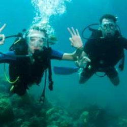 Plongee à Saint-Mal